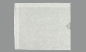 GLASSINE ENVELOPES Translucent 10 x 12