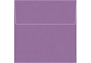 POP-TONE ENVELOPES AND PAPER Grape Jelly 6 x 6