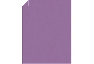 POP-TONE ENVELOPES AND PAPER Grape Jelly 25 x 19